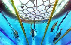Olympic swim meet!
