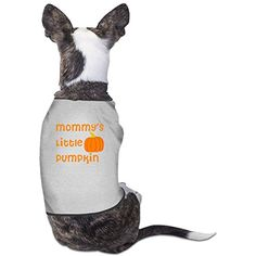 Little Pumpkin Comfortable Pet Dog Shirts Polyester Puppy Vest Dog Clothes *** Read more at the image link. (This is an affiliate link) #DogApparelAccessories