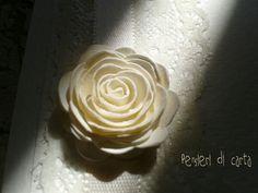 #rosa #carta