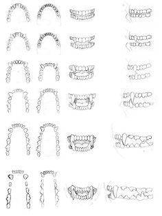 Teeth Drawing, Furry Drawing, Anatomy Drawing, Drawing Reference Poses, Anatomy Reference, Design Reference, Drawing Techniques, Drawing Tips, Creature Drawings