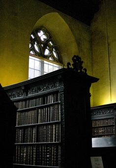 "Ever notice how that old books have a new light library glow? (""The Library Glow"", by Nfielden) Beautiful Library, Dream Library, Library Books, Library Bedroom, Hogwarts Library, Somerset, Architecture Design, Home Libraries, Gothic House"