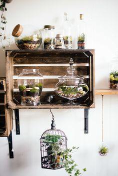 Wall garden (kitchen herb garden adaptation)