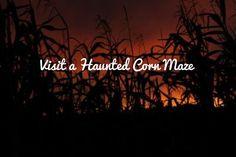 Visit a Haunted Corn Maze