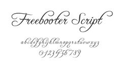free_curly_design_font_freebooter_script.png 640×360 pixels
