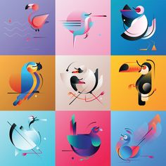 The Birds Vol.1 on Behance