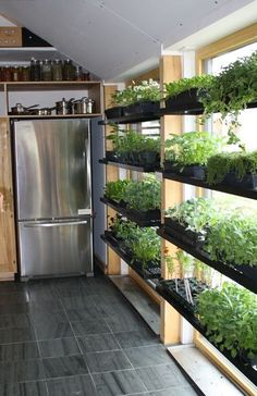 Indoor vegetable garden Vegetable Gardening for Beginners: Learn the basics of planting a garden, from planning out and designing the garden space to choosing the best vegetables to grow in your area. Gardening advice from The Old Farmer's Almanac. Herb Garden In Kitchen, Kitchen Herbs, Herbs Garden, Backyard Kitchen, Garden Types, Plants In Kitchen, Greenhouse Kitchen, Greenhouse Plants, Kitchen Gardening