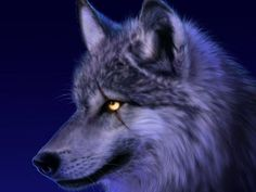 You are 100% wolf - How do you hide it from everyone? You are caring towards your pack but quick to step in if any of your friends or family are threatened. You howl at the moon, as if it were your God.