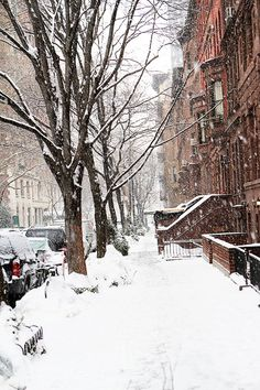 New York city snow falling, winter