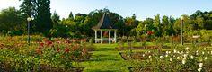 Bush Park Rose Garden and Gazebo - Salem, Oregon