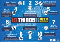 [Graphic] 10 Things every Scuba Diver needs to know - DIVE.in