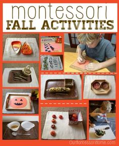 Montessori Fall Activities from Our Montessori Home
