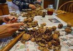 Beneficiile tratamentului cu coji de nuca. Nu le arunca! Okra, Stuffed Mushrooms, Remedies, Homemade, Vegetables, Health, Food, Sport, Medicine