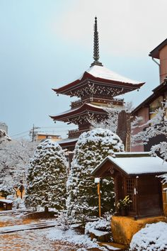The Japanese winter is magical, especially if you love sushi, skiing, snowboarding, hot springs & snow monkeys! See our top recommendations for winter in Japan.
