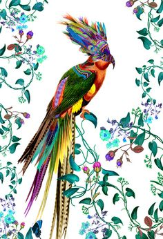 Hear My Colours - Vintage Inspired Bird Illustration Art Print by CSERA