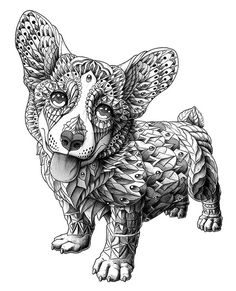Corgi on Behance