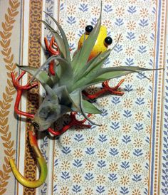 Tilla Critters Leaping Lizzie One of a Kind Air Plant Creations from Chili Fiesta HandiWorks