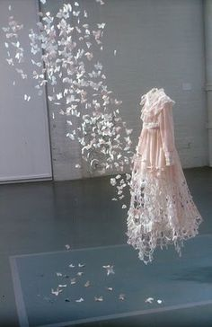 Beautiful Paper Butterflies Display