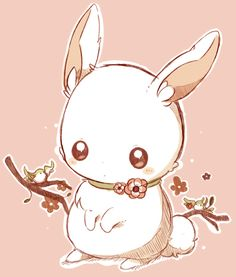 Most adorable bunny XD