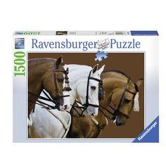 Heb je al wat ervaring met puzzels van 1000 stukjes? Dan wordt het tijd voor een nieuwe uitdaging: onze puzzel van 1500 stukjes! Als je op zoek bent naar langer puzzelplezier, maar met een gemiddelde moeilijkheidsgraad, dan is dit de juiste puzzel voor jou. Afmeting: puzzel 84 x 60 cm - Elegante Paarden, 1500st.