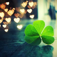 luck and love...is all you need!