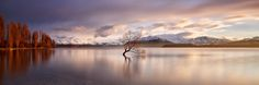 Something about Wanaka captured my heart the moment I stepped foot in the little town 5 years ago. Since then I've spent a good few months there and its a place I hope the end up. It seems to have the same effect on everyone who comes here. It is such an incredible place