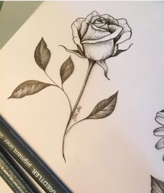 Absolutely In Love With This Tattoo Inspiration Tattoos Rose