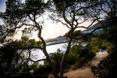 fotografos de bodas en Ibiza