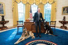 Jen Psaki, Jill Biden, Oval Office, Security Guard, Farm Hero Saga, Doge, Champs, Presidents, United States