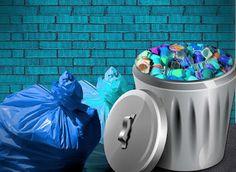 Il Rifugio Perfetto: Bidoni della spazzatura