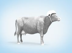 Tetrapak - Cow on Behance