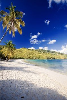✮ Morning Sunshine in Magens Bay, Saint Thomas, US Virgin Islands