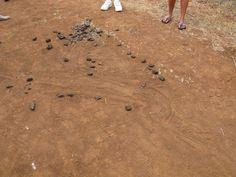 Galapagos, Santa Cruz: I had this down as land iguana dung, but it isn't.  I'll get back to you...