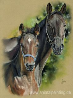 Pastel horse drawing by Angela Franke