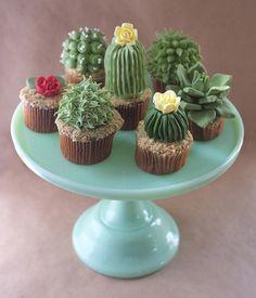 Voorhaft  - House Plant Cactus Cupcakes  Alana Jones-Mannmade...