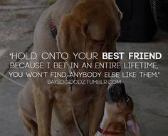 Lemme tell you bout my bestfriend