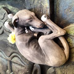 "Italian Greyhound Sculpture. Dog  Ceramic, ""SleepInG V"" by Malens Ceramics."