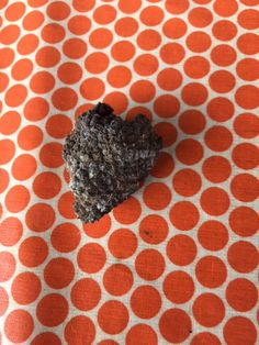 eerste truffel op ons domein gevonden Greedy People