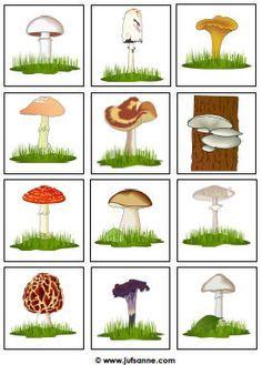Memorie: Herfst downloads » Juf Sanne -paddenstoelspel