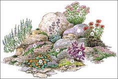 Easy Diy Garden Projects You'll Love Landscape Drawings, Landscape Design, House Landscape, Rock Garden Design, Alpine Garden, House Plant Care, Diy Garden Projects, Plant Design, Garden Planning