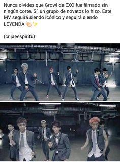 Exo Exo, Luhan, Kpop, Memes Exo, Parejas Goals Tumblr, Exo Ot12, Blackpink Jisoo, Bts Jungkook, Korea