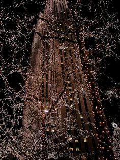 Christmas lights at Rockefeller Center, NYC