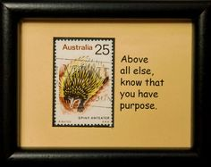 0271W Framed Postage Stamp Art Spiny by PassionGiftStampArt