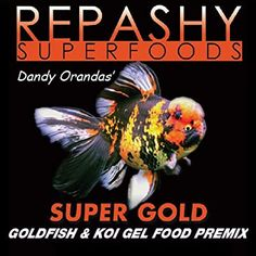 Amazon.com : Repashy Super Gold Goldfish and Koi Gel Food 6 Oz JAR : Pet Supplies Goldfish Food, Goldfish Tank, Koi, Dried Watermelon, Black Soldier Fly, Dandelion Leaves, Banana Powder, Cleaning Fish, African Cichlids
