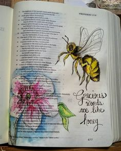 Psalm 16: 24  Gracious words are like honey.