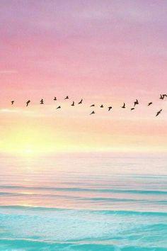 Birds flying against skyline - sunset, pink sky, blue ocean (contrast) Cute Wallpapers, Wallpaper Backgrounds, Phone Wallpapers, Beach Wallpaper, Sunshine Wallpaper, Heaven Wallpaper, Summer Wallpaper, Trendy Wallpaper, Pink Wallpaper