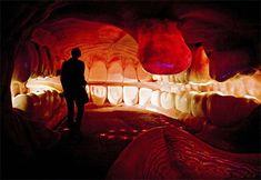 Dentro da boca 2 - http://www.dicasodonto.com.br/2012/09/27/top-five-imagens-odontologicas-da-semana-2/