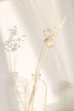 C Comme Crush : les box beauté DIY Joli'Essence – C by Clemence C Like Crush # 6 : the Joli'Essence DIY beauty boxes – C by Clemence / beauty box / joli'essence / cosmetics # boxbeauty # aromatherapy Cream Aesthetic, Flower Aesthetic, Aesthetic Photo, Aesthetic Pictures, Japanese Aesthetic, Aesthetic Pastel Wallpaper, Aesthetic Backgrounds, Aesthetic Wallpapers, Aesthetic Pastel Blue