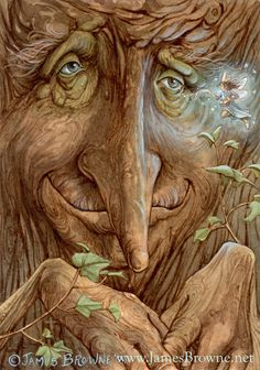 """One should go to the woods for safety, if for nothing else."" ~ John Muir James Browne~Old Wisebark by yaamas.deviantart.com on @deviantART"