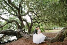 Resting on an ancient tree under the Spanish moss during a magical Boone Hall Plantation wedding.  Photographed by Charleston wedding photographer - RIVERLAND STUDIOS.  @boonehall