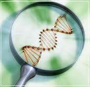 Quiero ser un Biotecnologo dedicado a investigación.